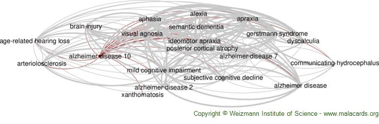 Diseases related to Alzheimer Disease 10
