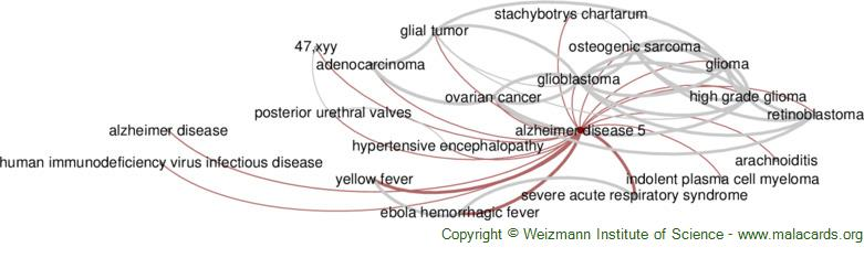 Diseases related to Alzheimer Disease 5
