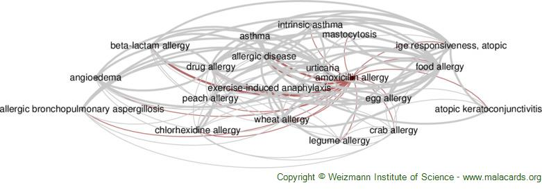 Diseases related to Amoxicillin Allergy