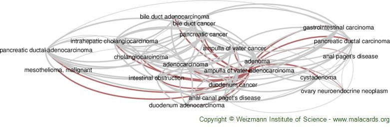 Diseases related to Ampulla of Vater Adenocarcinoma