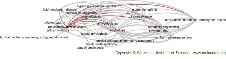 Diseases related to Amyloidosis, Familial Visceral