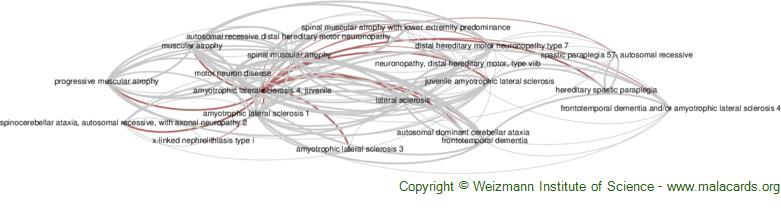 Diseases related to Amyotrophic Lateral Sclerosis 4, Juvenile