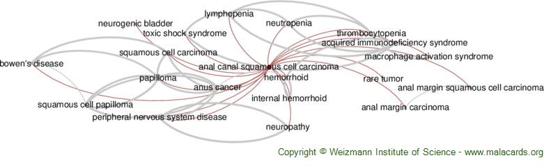 Diseases related to Anal Canal Squamous Cell Carcinoma