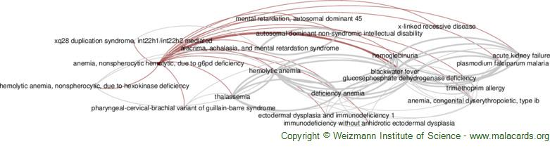 Diseases related to Anemia, Nonspherocytic Hemolytic, Due to G6pd Deficiency