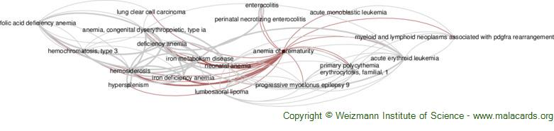 Diseases related to Anemia of Prematurity
