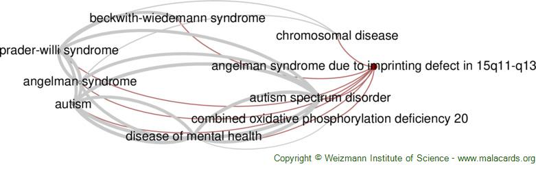 Diseases related to Angelman Syndrome Due to Imprinting Defect in 15q11-Q13