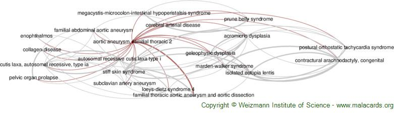 Diseases related to Aortic Aneurysm, Familial Thoracic 2