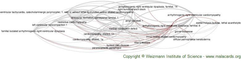 Diseases related to Arrhythmogenic Right Ventricular Dysplasia, Familial, 6
