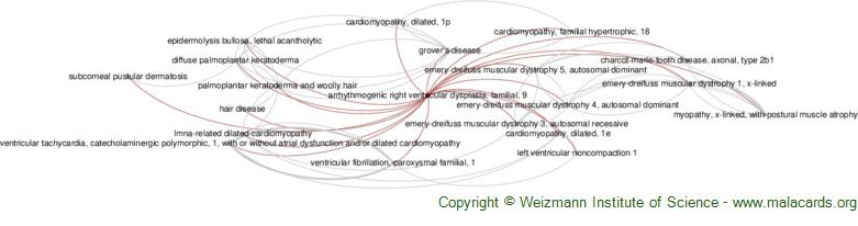 Diseases related to Arrhythmogenic Right Ventricular Dysplasia, Familial, 9
