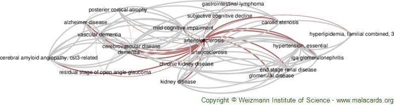 Diseases related to Arteriolosclerosis