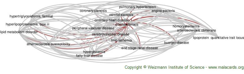 Diseases related to Arteriosclerosis