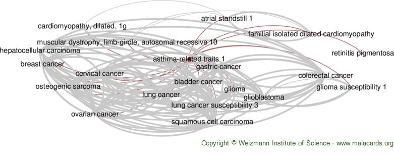 Diseases related to Asthma-Related Traits 1