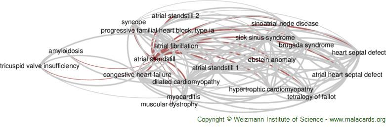 Diseases related to Atrial Standstill