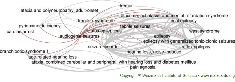 Diseases related to Audiogenic Seizures