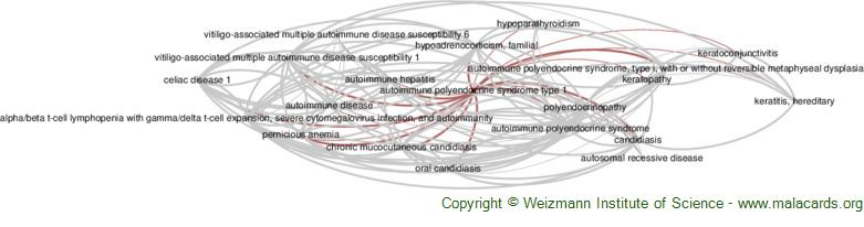 Diseases related to Autoimmune Polyendocrine Syndrome Type 1
