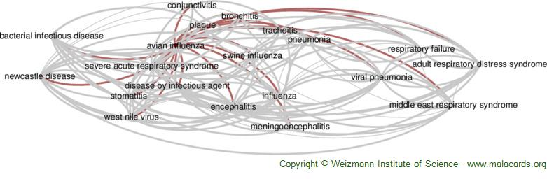 Diseases related to Avian Influenza