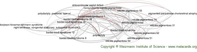 Diseases related to Bardet-Biedl Syndrome 19