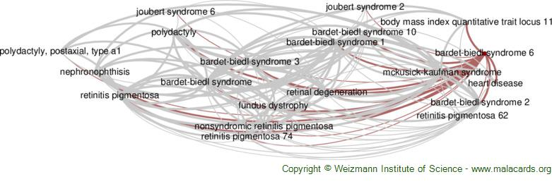 Diseases related to Bardet-Biedl Syndrome 6