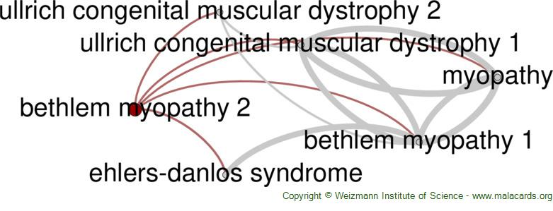 Diseases related to Bethlem Myopathy 2