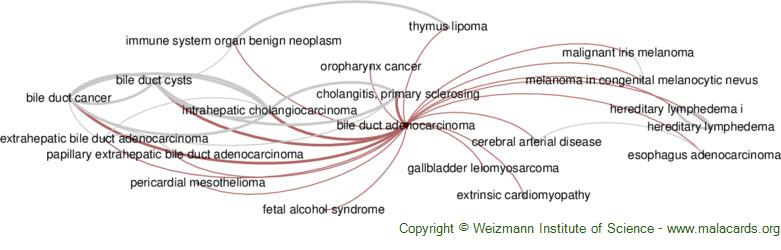 Diseases related to Bile Duct Adenocarcinoma