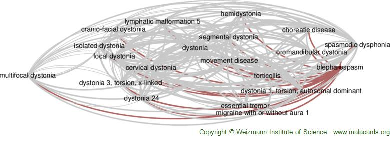 Diseases related to Blepharospasm