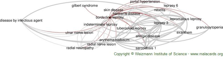 Diseases related to Borderline Leprosy