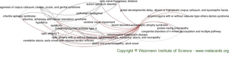 Diseases related to Bosch-Boonstra-Schaaf Optic Atrophy Syndrome
