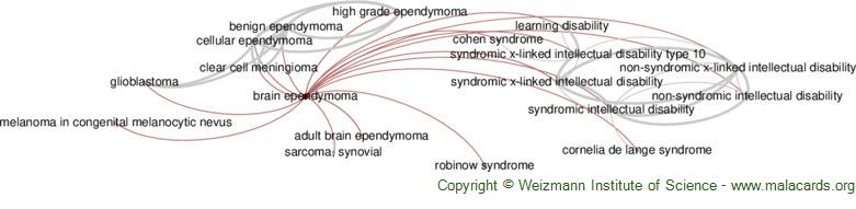 Diseases related to Brain Ependymoma