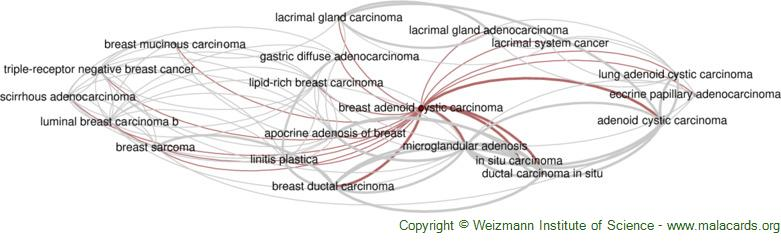 Diseases related to Breast Adenoid Cystic Carcinoma