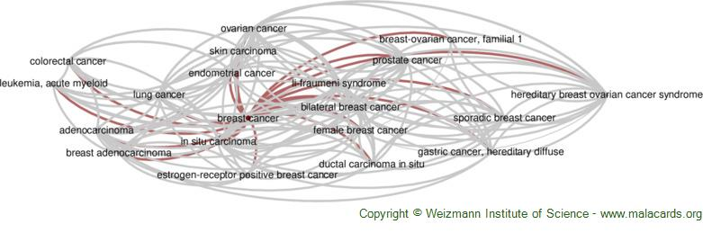 Diseases related to Breast Cancer