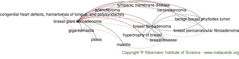 Diseases related to Breast Giant Fibroadenoma