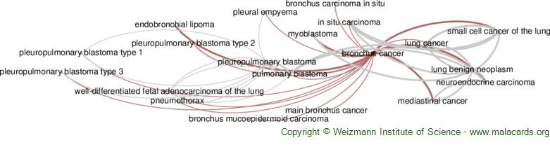 Diseases related to Bronchus Cancer