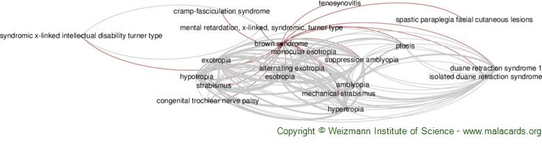 Diseases related to Brown Syndrome