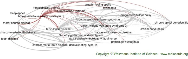 Diseases related to Brown-Vialetto-Van Laere Syndrome 1