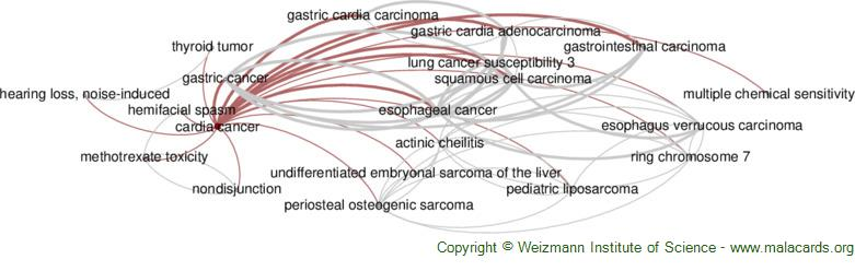 Diseases related to Cardia Cancer