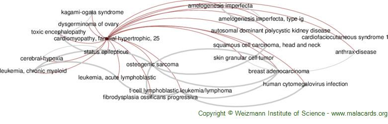 Diseases related to Cardiomyopathy, Familial Hypertrophic, 25
