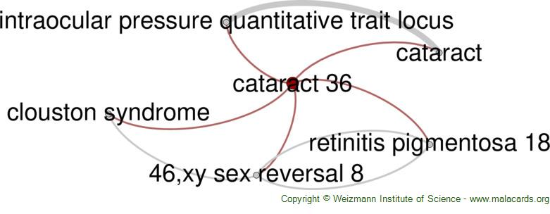 Diseases related to Cataract 36