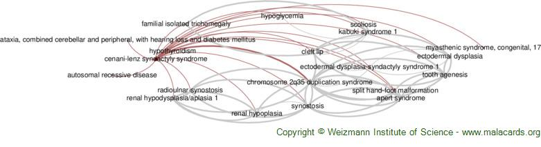 Diseases related to Cenani-Lenz Syndactyly Syndrome
