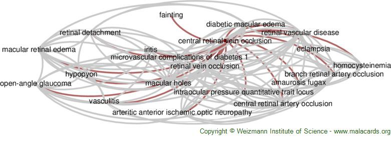 Diseases related to Central Retinal Vein Occlusion