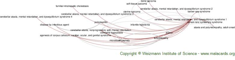 Diseases related to Cerebellar Ataxia, Mental Retardation, and Dysequilibrium Syndrome 1