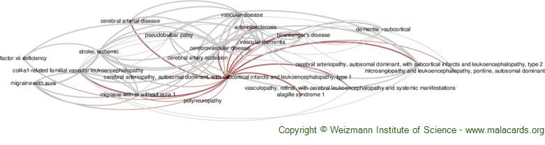 Diseases related to Cerebral Arteriopathy, Autosomal Dominant, with Subcortical Infarcts and Leukoencephalopathy, Type 1