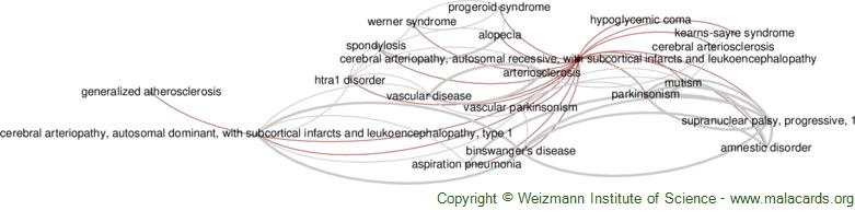 Diseases related to Cerebral Arteriopathy, Autosomal Recessive, with Subcortical Infarcts and Leukoencephalopathy