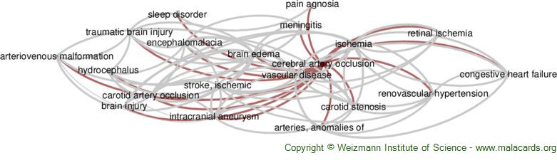Diseases related to Cerebral Artery Occlusion