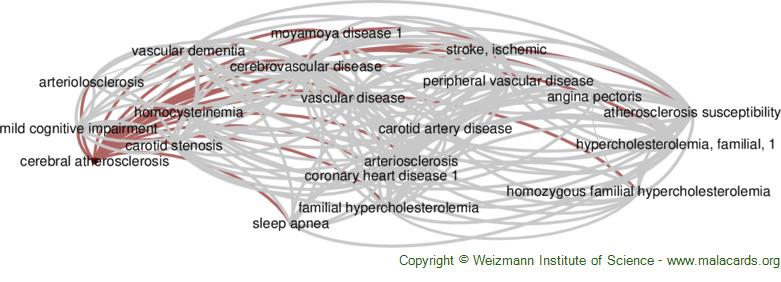 Diseases related to Cerebral Atherosclerosis