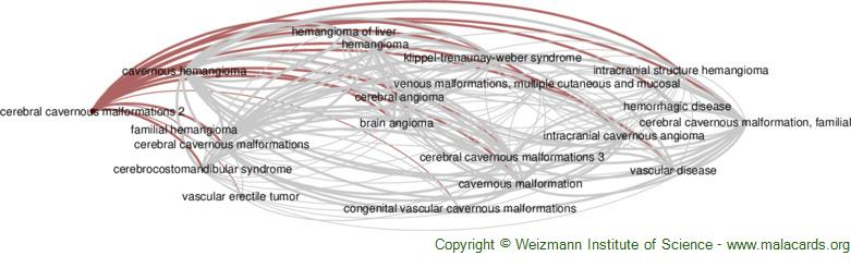Diseases related to Cerebral Cavernous Malformations 2