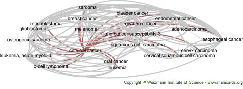 Diseases related to Cervical Cancer