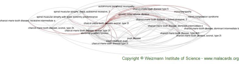 Diseases related to Charcot-Marie-Tooth Disease, Axonal, Type 2i