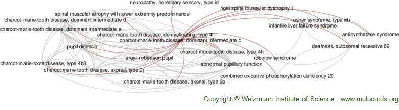 Diseases related to Charcot-Marie-Tooth Disease, Dominant Intermediate C