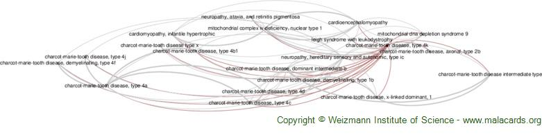 Diseases related to Charcot-Marie-Tooth Disease, Type 4k