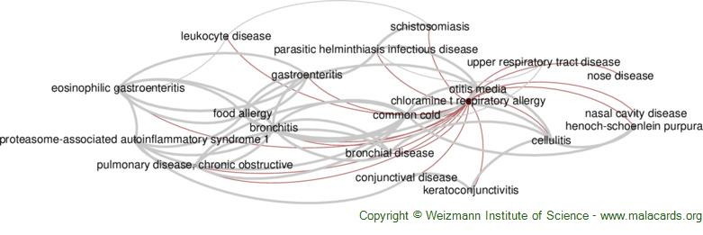 Diseases related to Chloramine T Respiratory Allergy